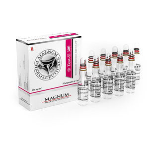 Buy Testosterone enanthate with fast shipping in USA | Magnum Test-E 300 at a low price at firesafetysystemsfl.com