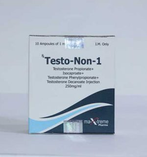 Buy Sustanon 250 (Testosterone mix) with fast shipping in USA | Testo-Non-1 at a low price at firesafetysystemsfl.com